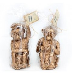 An assortment of 2 beautifully detailed gold monkey candles. An on trend gift item and interior accessory.