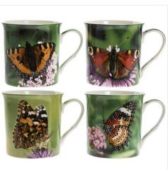 An assortment of 4 photographic butterfly mugs each with a gift box.