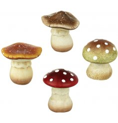 An assortment of 4 whimsical woodland mushroom decorations in a mix of colours and designs.