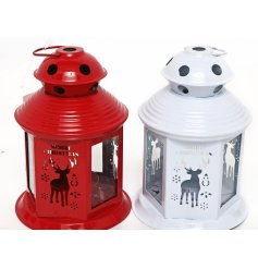 A mix of red and white toned mini lanterns featuring cut out text and a stag decal
