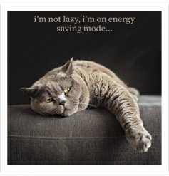 I'm not lazy, i'm on energy saving mode. A fine quality photographic card with humorous slogan.