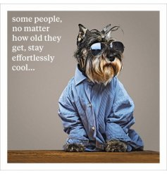 Some people, no matter how old they get, stay effortlessly cool. A humorous sentiment card with photographic animal
