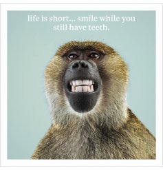 Life is short...smile while you still have teeth! A premium quality, humorous greetings card from ICON.