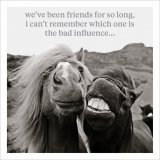 A brilliant and quirky photographic image with a humorous friendship quote. A wonderful greetings card for many occasion