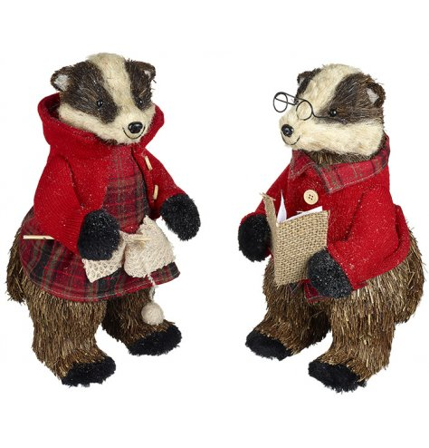 Woodland badgers dressed in traditional green and red Christmas outfits.