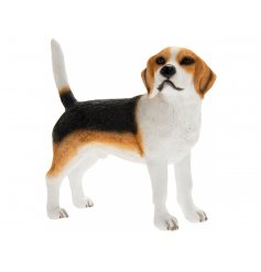 Beagle Leonardo dogs are solid resin figures finished to a high standard.