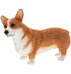 Corgi Leonardo dogs are solid resin figures finished to a high standard.