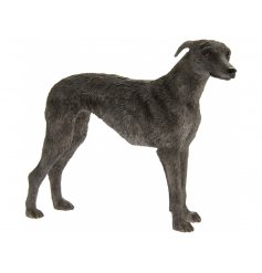 Lurcher Leonardo dogs are solid resin figures finished to a high standard.