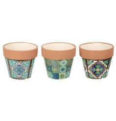An assortment of small decorative pots, each set with a chic green toned pattern and terracotta rim