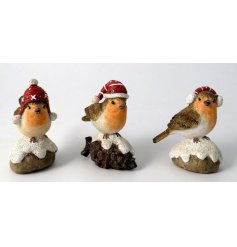 A cute mix of perched Winter Robin Decorations, perfectly assorted by their festive themed hats!