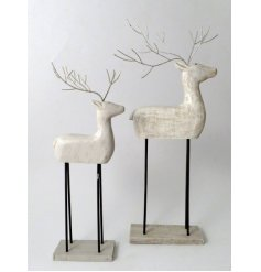 A contemporary inspired Standing Reindeer decoration set with a distressed white washed tone