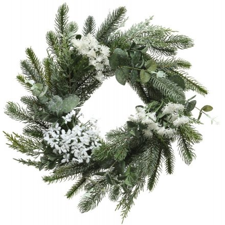 Frosted Foliage Wreath, 50cm