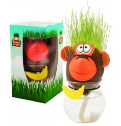 Let your little ones grow their own grass and become fabulous hair stylists!