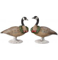 Bring a subtle twist to your Christmas Decor with this charming mix of standing Geese Decorations