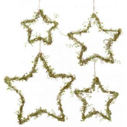 Hanging Mistletoe Entwined Stars