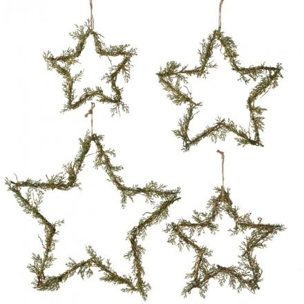 Hanging Pine Branch Entwined Stars