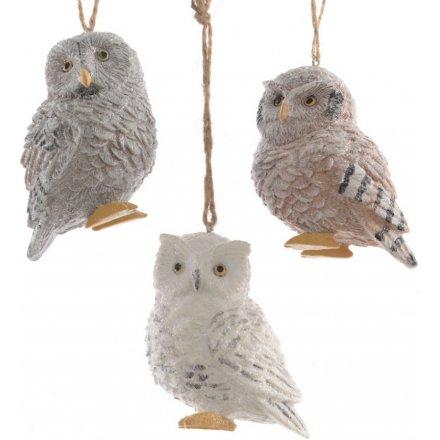 Winter Owl Hangers, 3ass