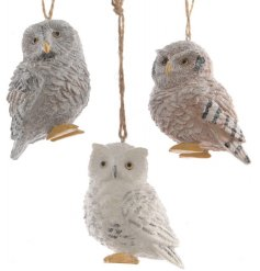 this assortment of hanging owl figures will be sure to place perfectly on any tree at Christmas time