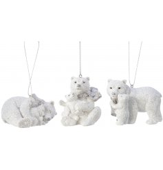 An adorable assortment of posed Polar Bear hangers sprinkled with a glittery finish
