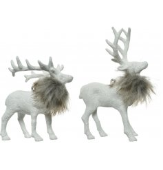 A mix of 2 chic hanging decorations in reindeer and stag designs. Each has a white glitter finish and faux fur trim.
