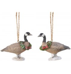 An  assortment of festive hanging geese, complete with an added sprinkle of glitter