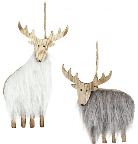 An assortment of 2 wooden reindeer decorations with grey and white faux fur coats.
