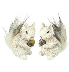 A cute mix of sitting resin squirrels, decorated with a subtle sprinkle of glitter
