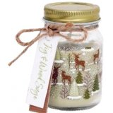 A sweetly scented wax candle within a glass mason jar, beautifully decorated with a woodland print and added jute bow
