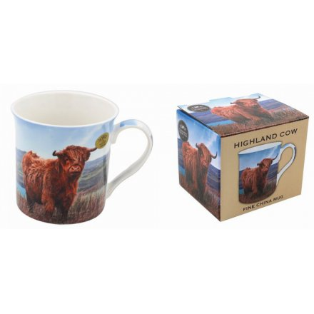 Grazing Highland Cow Mug