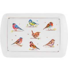 A plastic serving tray with a beautiful Garden Birds decal and smooth finish