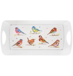 A plastic serving tray covered with a charming illustrated bird decal