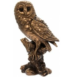 A fabulous edition to the Reflections collection is this Bronzed Owl.