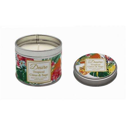 Desire Boutique Candle Tin - Tropical Citrus & Sage