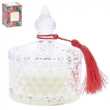 Desire Tropical Candle Jar - Tangerine & Vanilla
