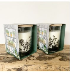 Lovely scented candle in a glass pot with a wooden lid - this gift boxed candle is part of the Potting Shed range