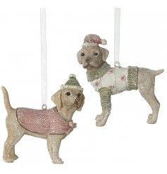 Bring a cute 4 legged feature to your Christmas Tree this season with this adorable mix of hanging resin dogs