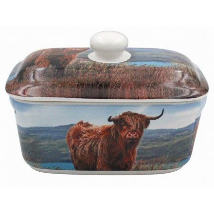Grazing Highland Cow Butter Dish