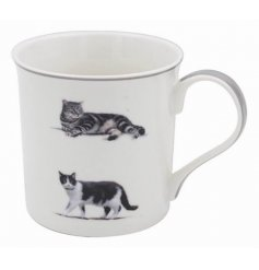 Covered with a cute cat themed decal, this grey trimmed Fine China Mug will be sure to place perfectly in any kitchen