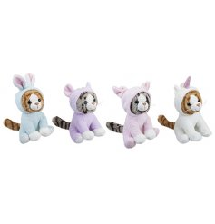 A cute and cuddly mix of kitten soft toys adorably dressed in character onesies!