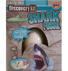 a little box filled with excavating tools to discover a cool glowing shark fossil