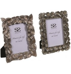 A charming mix of decorative picture frames set with assorted leaf patterns and a distressed bronzed tone