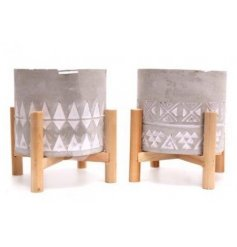 A gorgeously distressed mix of concrete planters, each assorted by their own embossed decals and patterns