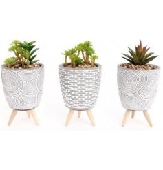 A stylish mix of distressed concrete pots featuring embossed patterns and filled with blooming artificial succulents