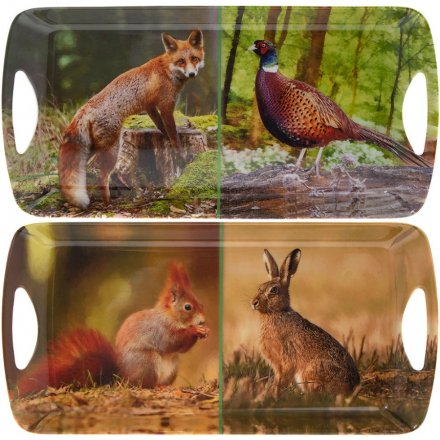 Woodland Wildlife Assorted Trays 41cm