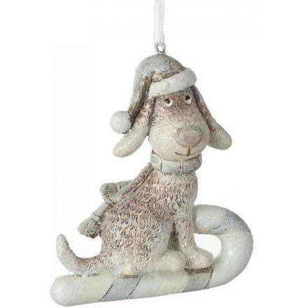 Santa Dog on Sleigh