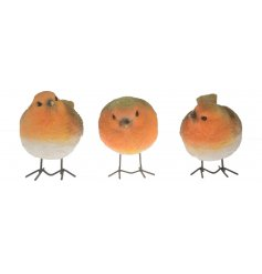 A charming assorted of posed Robin decorations, perfectly suitable for the home and garden