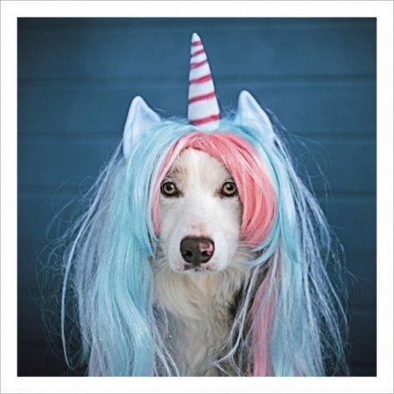 Unicorn Dog Greetings Card