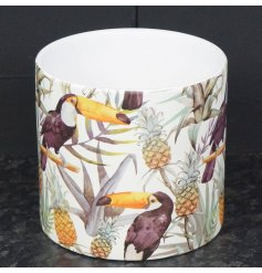 Stylish ceramic plant pot painted with toucan and tropical fruit design