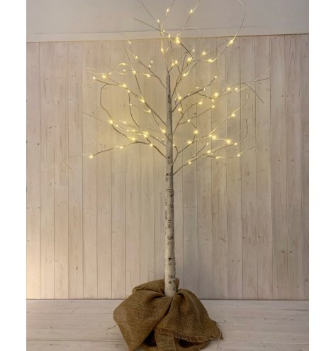 A tall white birch twig tree with illuminating Led tips