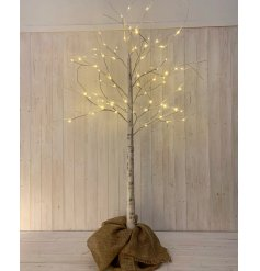A birch bark inspired twig tree with warm glowing LED tips, perfectly placed within a hessian bagged base